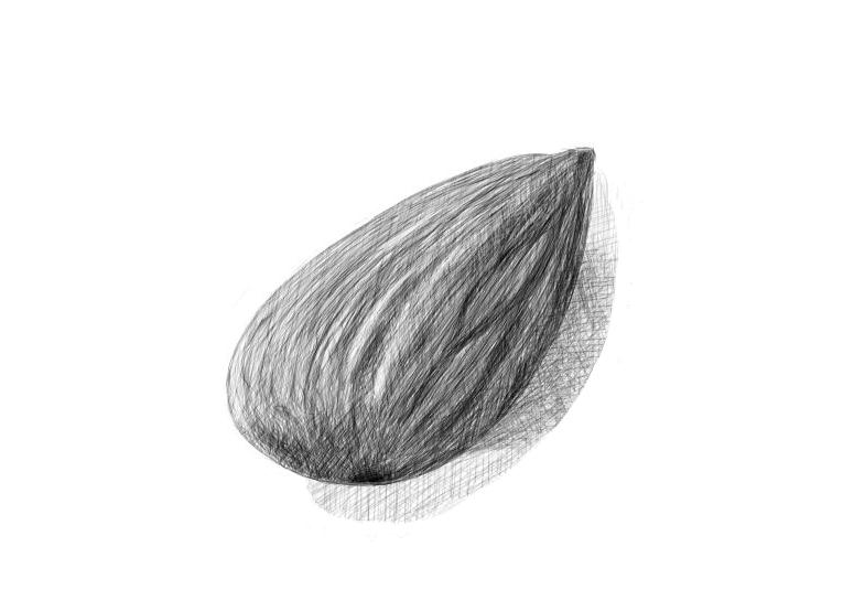 April 16, 2013 - An almond drawing that looks much better at a distance.