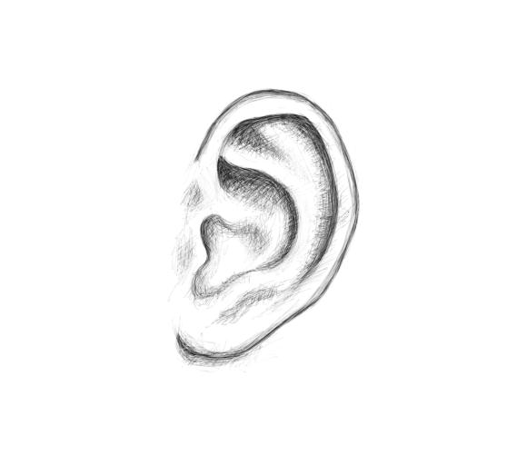 Daily Drawing Day_55: Ear Sketch